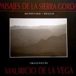Mauricio de la Vega Meija