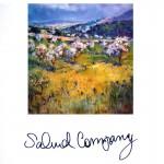 Katalog Salud Company