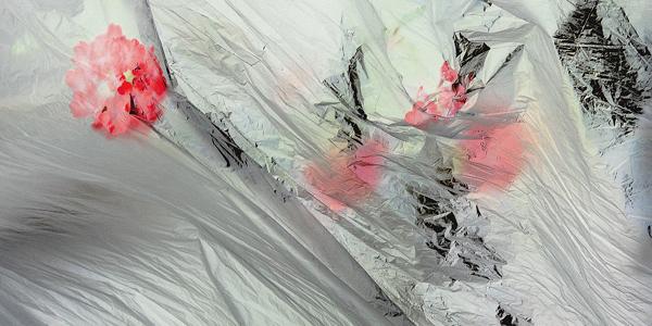 Heiko Oehme | Galerie Edition Camos