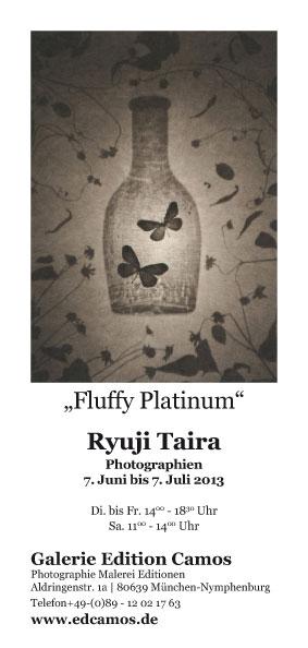 Edcamos Fluffy Platinum